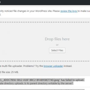 WordPress Media Upload Error: Is Its Parent Directory Writable