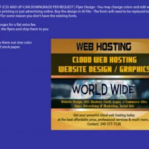 Flyer Design Vector Web Hosting